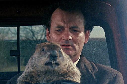 El día de la marmota